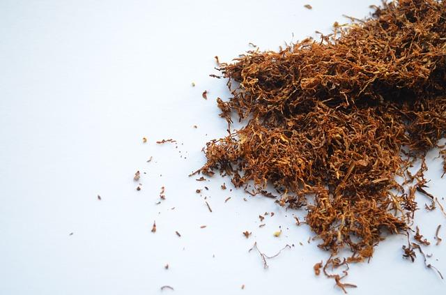 tabac nicotine